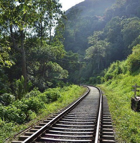 Maîtrise des Environnements ferroviaires